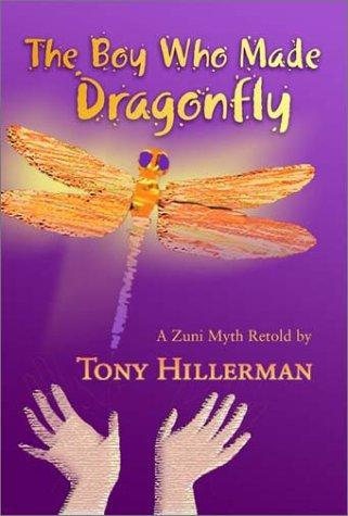 Download The boy who made dragonfly