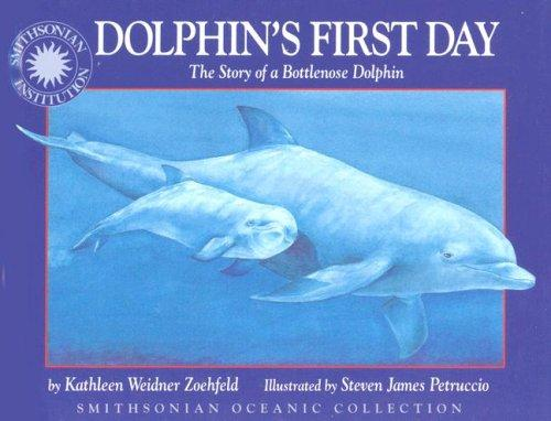 Download Dolphin's first day