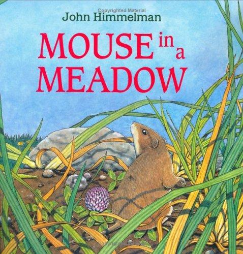 Download Mouse in a Meadow