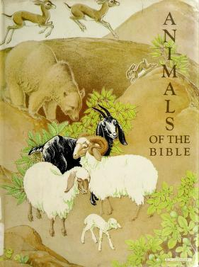 Cover of: Animals of the Bible | Helen Dean Fish, Dorothy Pulis Lathrop