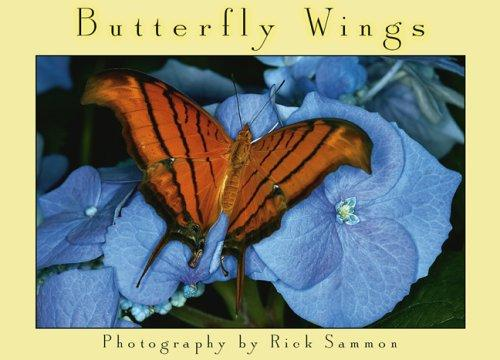 Butterfly Wings Boxed Notes by Rick Sammon